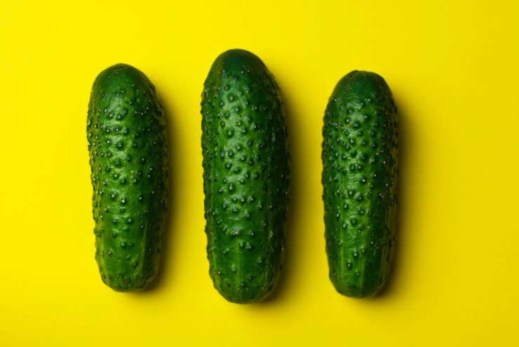 cucumbers-food-gherkins-8694